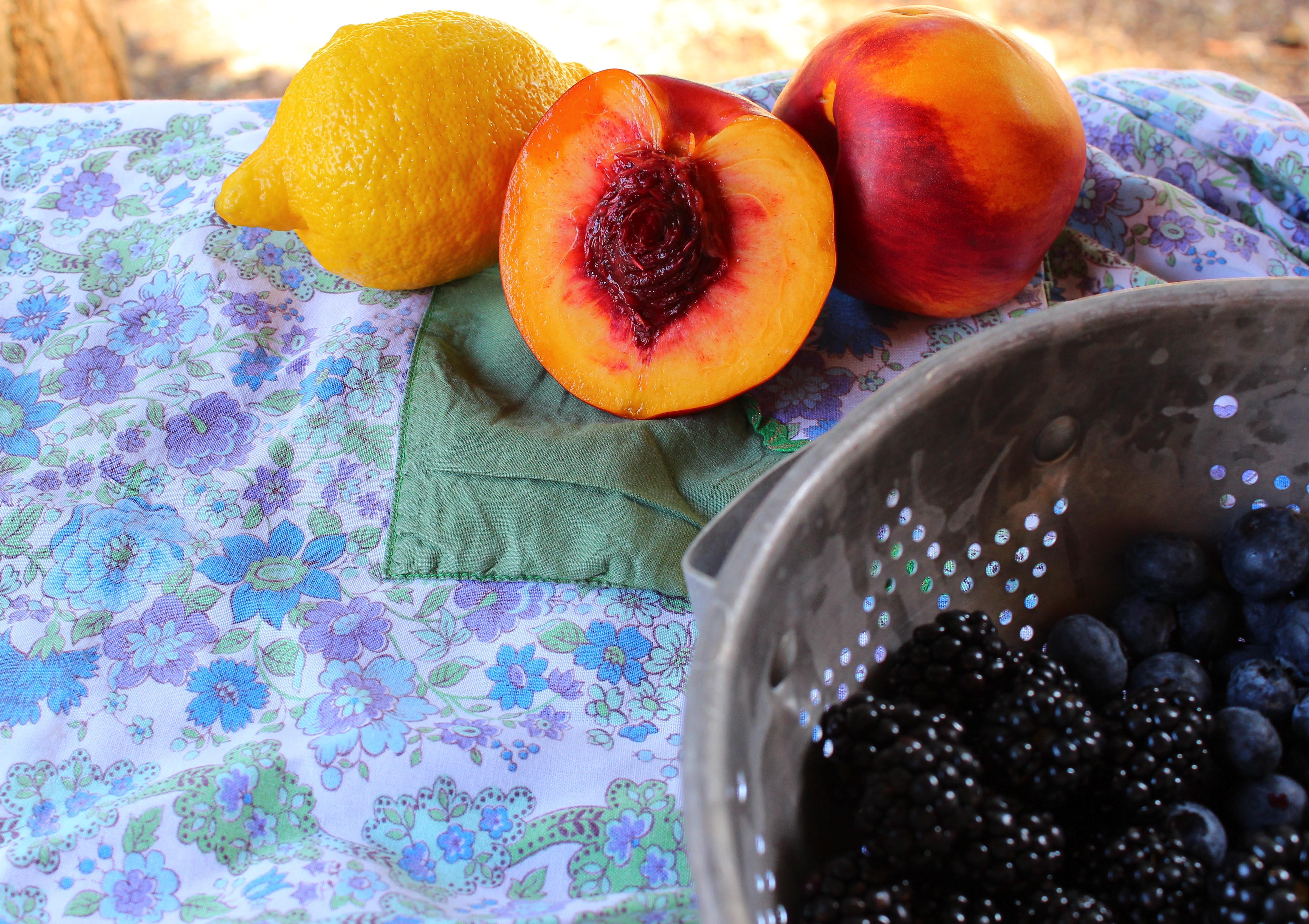 Blackberry Nectarine Galette and Lemon Blueberry Galette-lets